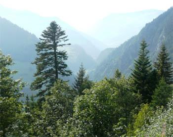 Prachtig dal van de Cormet Roselend